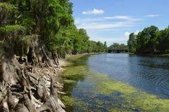 一条河在美国 免版税库存照片