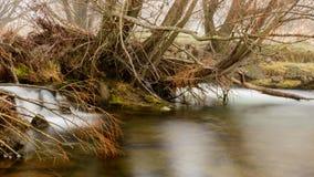 一条河的看法在一有雾的天在冬天期间在Twizel 库存照片