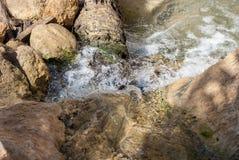一条河的起点在沙漠 免版税库存照片