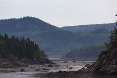 一条河的风景通过山,在一有雾的天,处于低潮中 库存照片