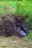 一条泥泞的国家atv路线 库存照片