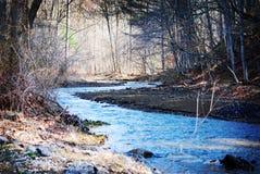 一条流动的小河在布朗县国家公园的森林 免版税库存图片