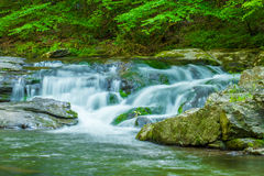 一条流动的山小河 免版税库存照片