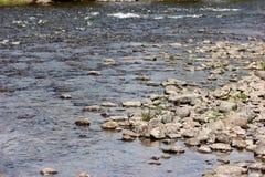 一条流动的河的看法从银行的 免版税库存图片