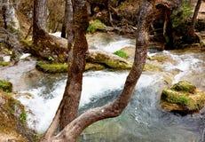 一条清楚的山小河在早期的春天 图库摄影