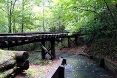 一条火车轨道从先驱采伐的天 免版税库存图片