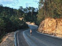 一条狭窄的弯曲的路的一位女性 库存图片
