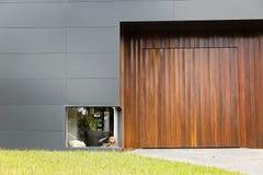 一条白色狗的颜色照片和一个低窗口的一棕色狗等待的infront在一个房子的有木材和铝金属的 图库摄影
