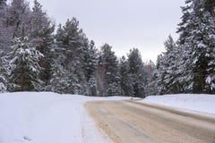 一条离开的冬天路在森林里 免版税图库摄影