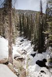一条积雪的河在科罗拉多 免版税库存照片