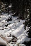一条积雪的河在科罗拉多 免版税库存图片