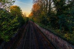 一条空的铁路标示用树 免版税库存图片