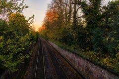 一条空的铁路标示用树 免版税库存照片