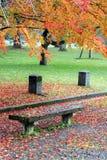 一条空的长凳在秋天公园 库存照片
