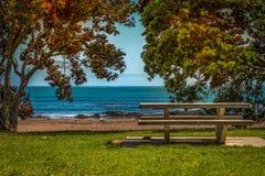 一条空的长凳的照片由海边手段的 库存图片