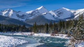 一条结冰的河在加拿大罗基斯 免版税图库摄影
