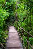 一条美丽如画的木道路在泰国 库存照片