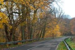 一条美丽如画的秋天高速公路,与黄色叶子的树在路 库存图片
