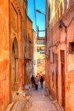 一条美丽如画的车道在老镇Fes在摩洛哥 免版税图库摄影