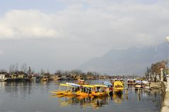 一条美丽的小船使用在Dal湖克什米尔印度在wiinter期间 库存图片
