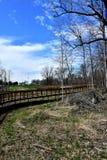 一条美丽的新的树木繁茂的自行车道路在春天 免版税库存照片