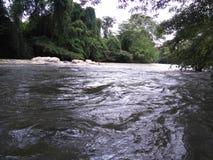 一条美丽的河在斯里兰卡 库存图片