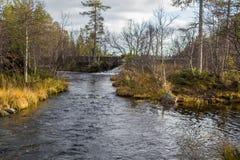 一条美丽的河在秋天的流经挪威森林 库存照片