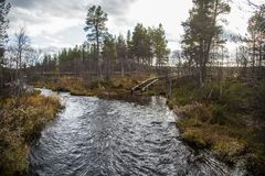 一条美丽的河在秋天的流经挪威森林 库存图片