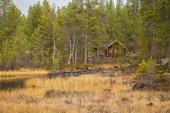 一条美丽的河在秋天的流经挪威森林 免版税库存图片
