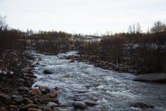 一条美丽的河在秋天的流经挪威森林 免版税图库摄影