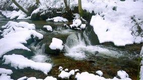 一条美丽的透明的小河在与雪的冬天流经森林 影视素材