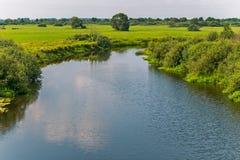 一条美丽,深,光亮的河流经绿色草甸 给生气勃勃和凉爽一切  免版税库存照片