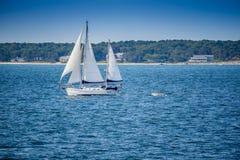 一条美妙地私有的风船在鳕鱼角,马萨诸塞 图库摄影