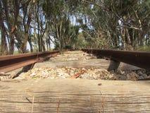 一条老被放弃的铁路的特殊路轨 库存图片