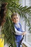 一条蓝色连衫裤的婴孩在窗口附近的一棵棕榈树后 库存图片