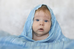 一条蓝色围巾的美丽的女孩 免版税库存图片