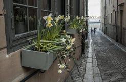 一条街道在斯德哥尔摩 免版税库存图片