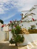 一条街道的看法在希腊海岛 库存照片