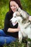 一条西伯利亚爱斯基摩人狗和户外女孩的纵向 库存照片