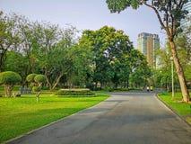 一条跑步的轨道在公园庭院里在绿叶树中的,灌木和灌木,佩带五颜六色的T恤杉赛跑的人们 免版税库存图片