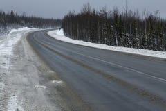 一条路在森林和雪里 免版税图库摄影