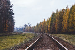 一条路在秋天 图库摄影