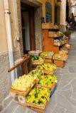 一条路的商店在里奥马焦雷,意大利 免版税库存照片