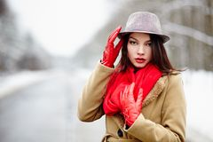 一条路的妇女在冬天 免版税库存图片