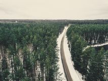 一条路的寄生虫摄影在森林之间的在冬天-葡萄酒lo 免版税库存照片