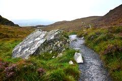一条路通过康尼马拉国立公园在爱尔兰 图库摄影