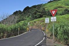 一条车道路 免版税图库摄影