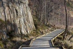 一条通过峭壁面孔的木道路主角 免版税库存图片