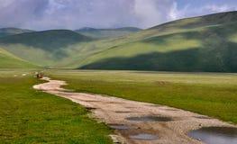 一条道路向绵延山 库存图片