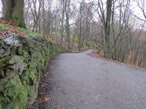一条道路在一个五颜六色的秋天公园 免版税图库摄影